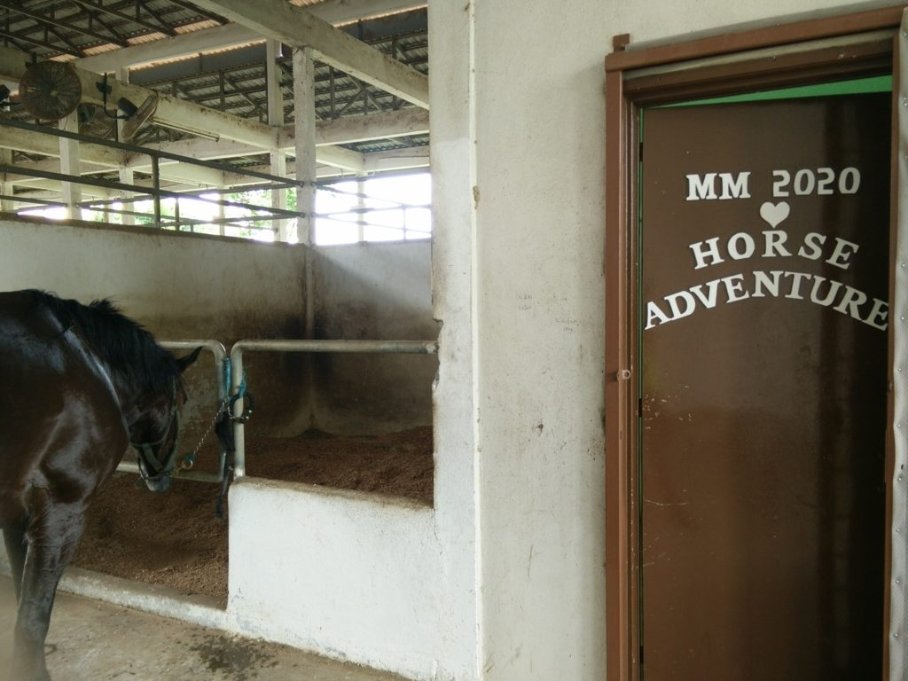 MM2020 Horse Adventure office entrance