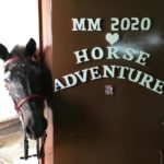 Rayo MM2020 Horse Adventure