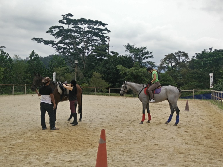 Suki (left) and Irene (right) exchanged horses.