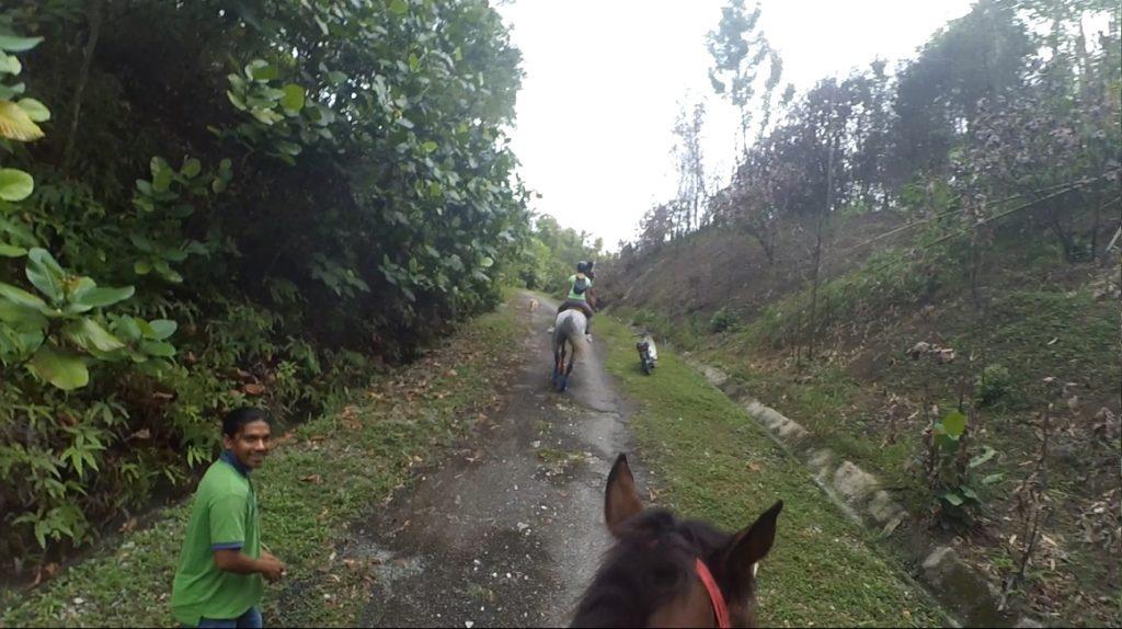 Look, Jockey is leading in front!