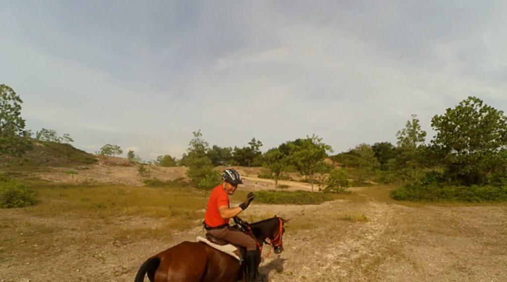 Boy explains how he train horses.
