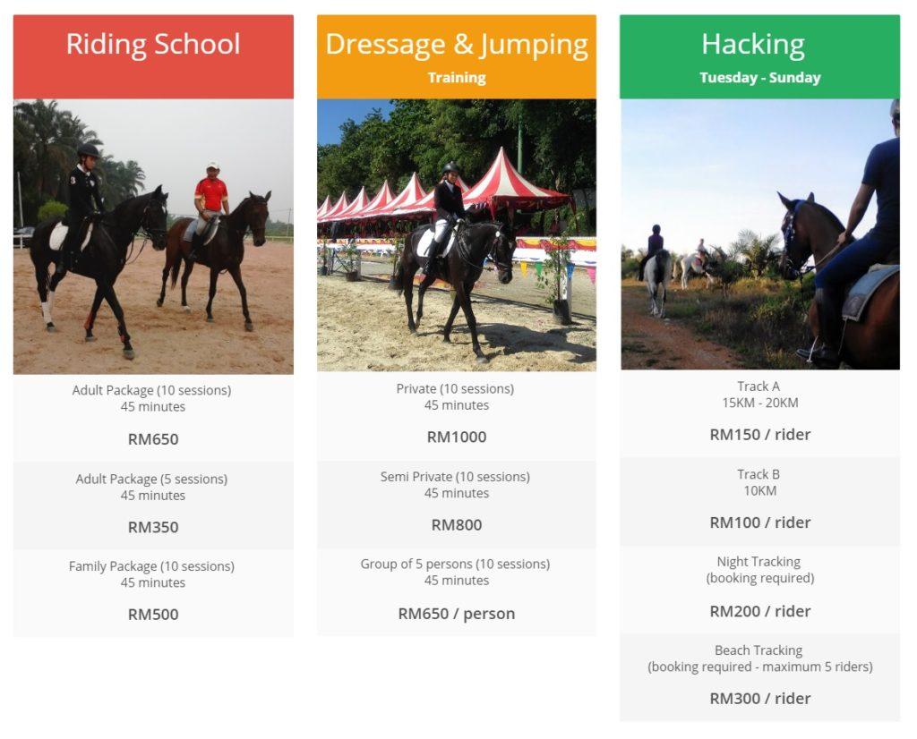 Vistapolo Equestrian activities