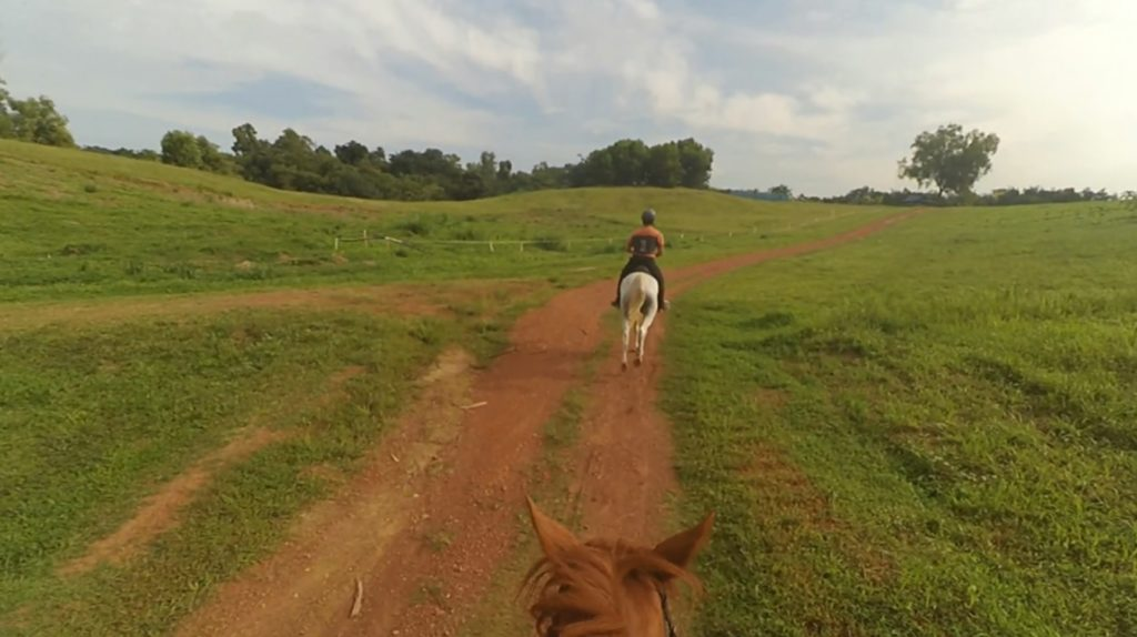 hilly-canter