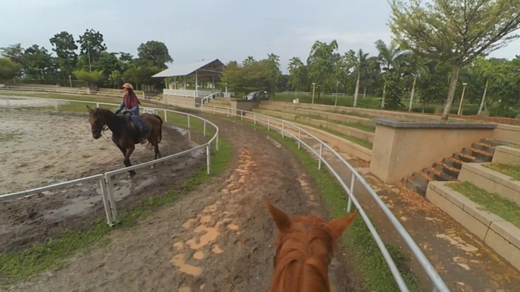 Riding in MAEPS arena