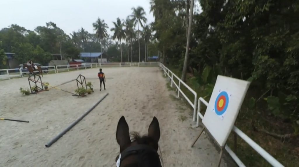 trotting-on-nix-bahamdan