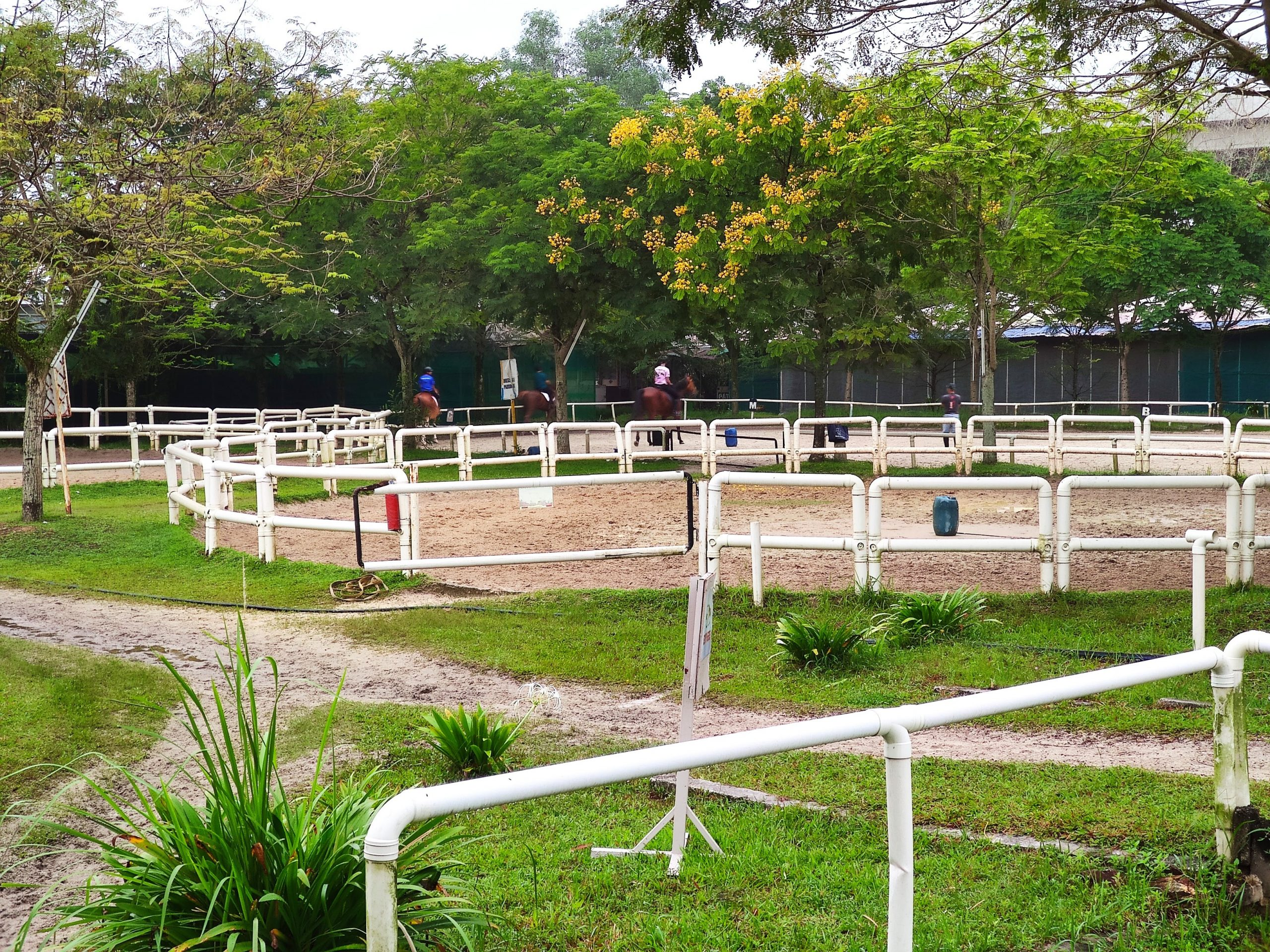 Denai Alam Recreational and Riding Club DARC