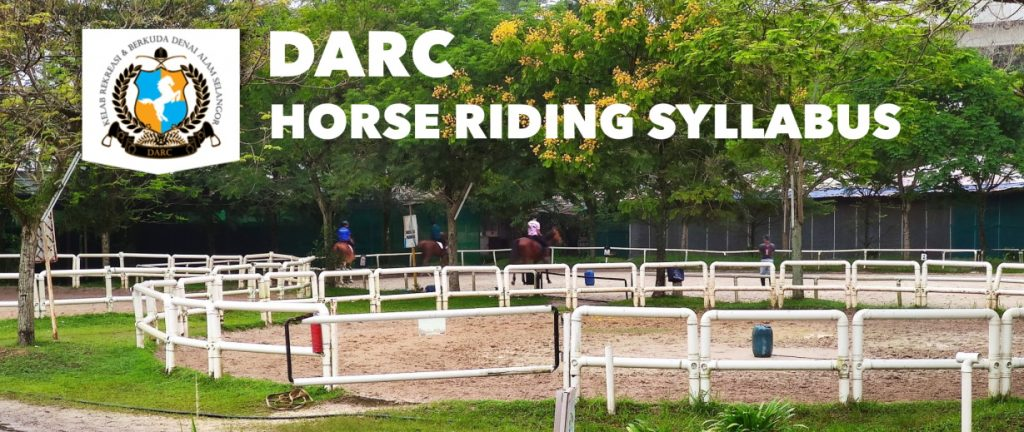 DACR Horse Riding Syllabus