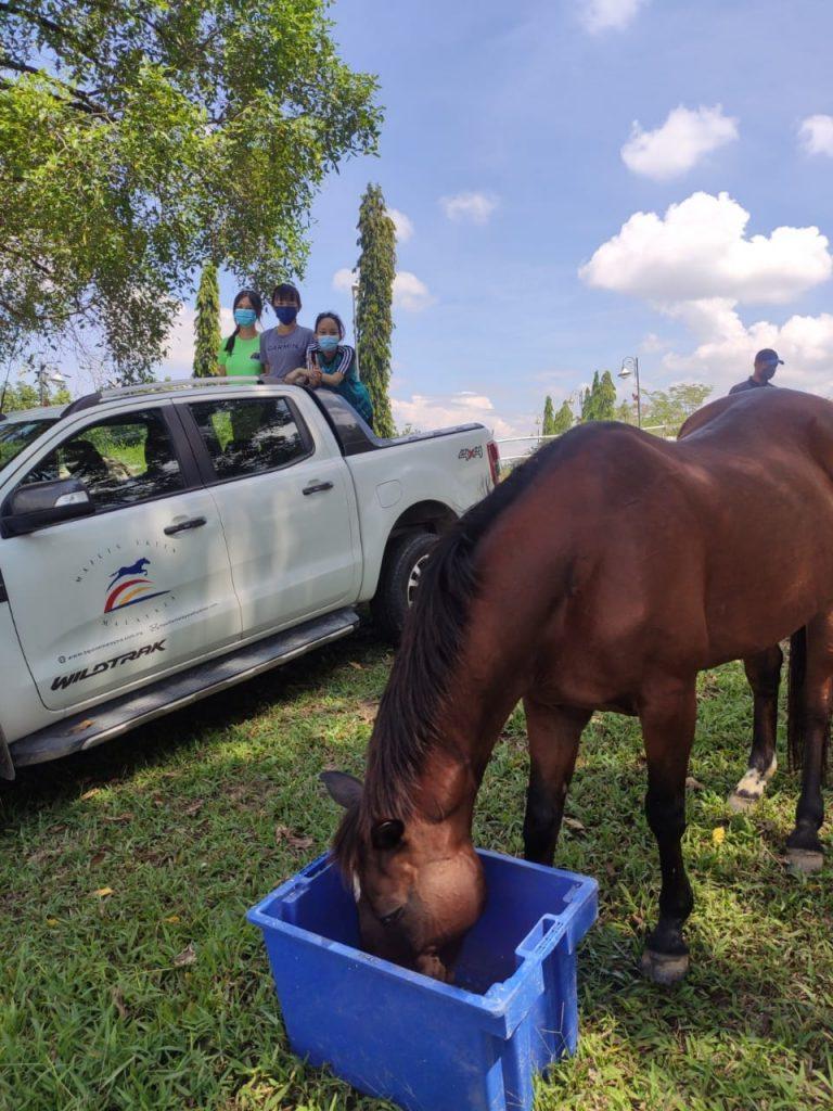 Majlis Ekuin Malaysia O Level - feeding at paddock