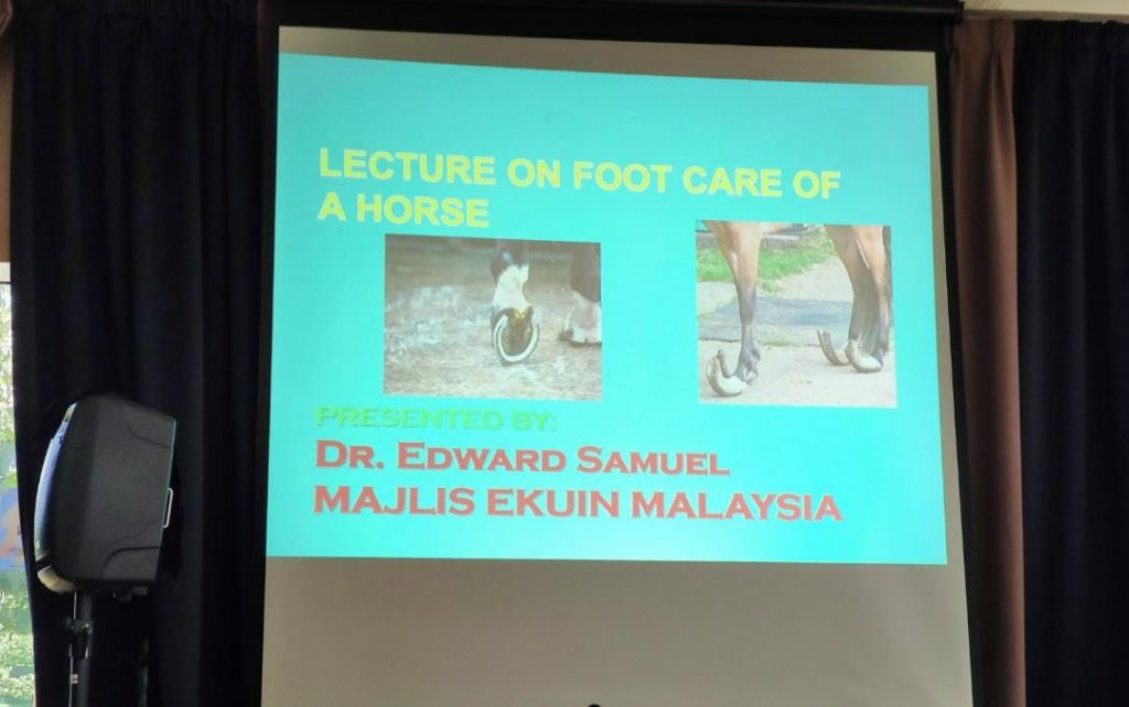 Majlis Ekuin Malaysia O Level foot care