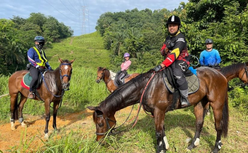 DSIA Equestrian and Riding Club